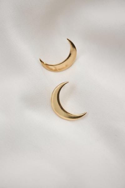 Crescent Moon Earring