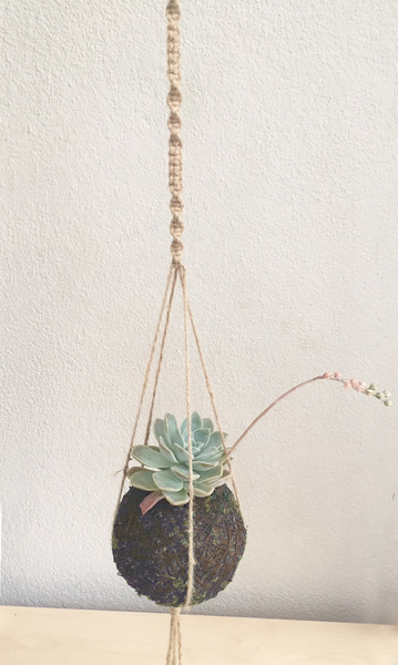 100% jute eco string or cotton rope Length of rope - 55cm Kokedama not included Knotted hoop for hanging  Options:(Please specify in the comments which you would prefer) Jute or Cotton rope Different length of plant hanger